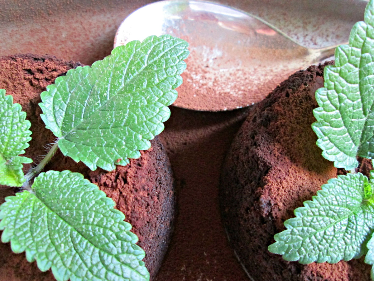 Coulant de chocolate con aceite de toronjil